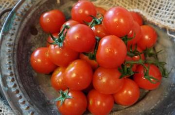 Tomato Salad With Lemon and Cilantro