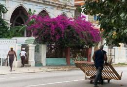 Cuba 2017-390aa - Copy