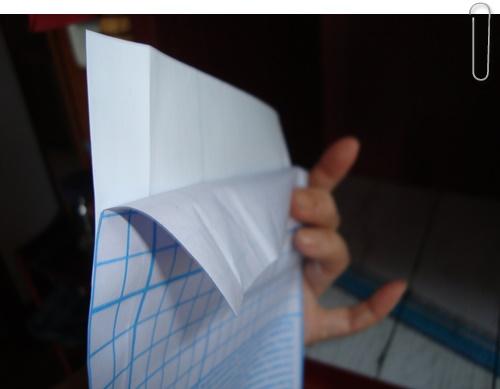 2~3cmはくり紙をはがします。