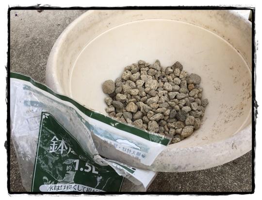 鉢底石を鉢の穴が隠れるくらい入れます。