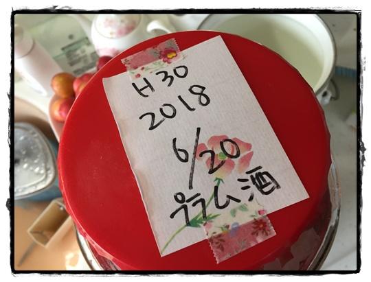 忘れずに日付を入れましょう。果実の引き上げのタイミングのために!