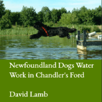 Newfoundland Dogs Water Work in Chandler's Ford