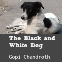 The Black and White Dog