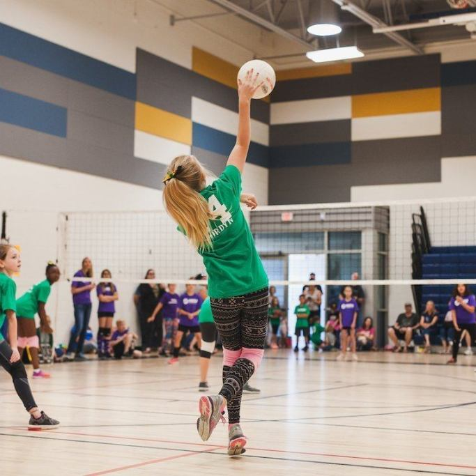 volleyball-no-logo