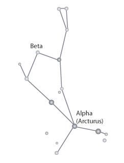 Chandra :: Photo Album :: Constellation Boötes