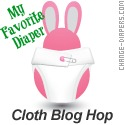 cloth diaper blogs