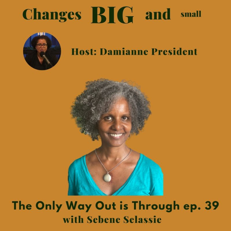 Cover art for episode 39 of Changes Big and Small with Sebene Selassie