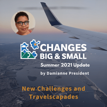 cover image of episode 88 of changes big and small with plane wing background