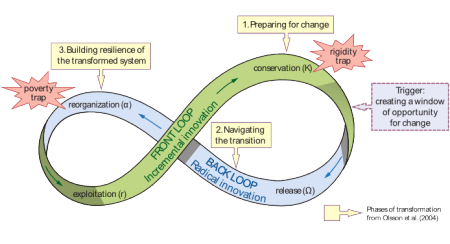 Diagram of the adaptive cycle; includes visual description of adaptive phases, preparing for change, navigating change, building resilience in the transformed system