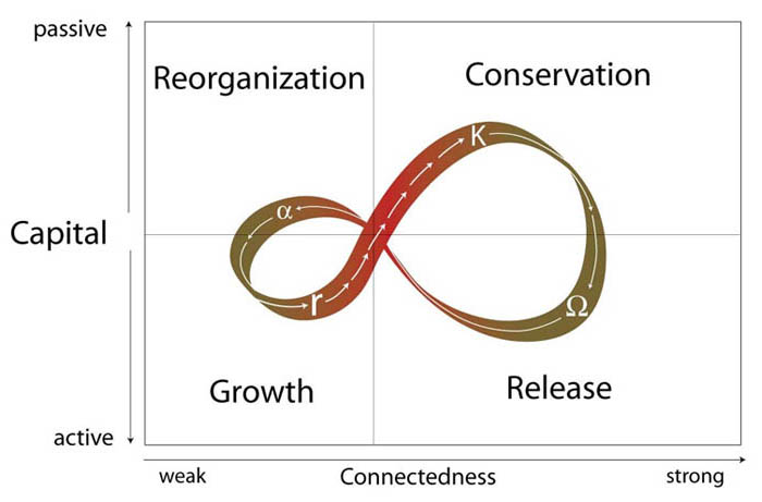 The four phases of the adaptive cycle-reorganization, growth, conservation, release