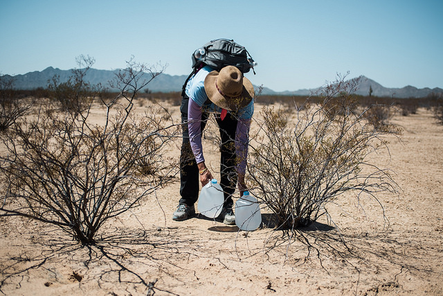 UUSC staff member Rachel Freed places a jug of water in the Cabeza Prita National Wildlife Refuge, August 5, 2018