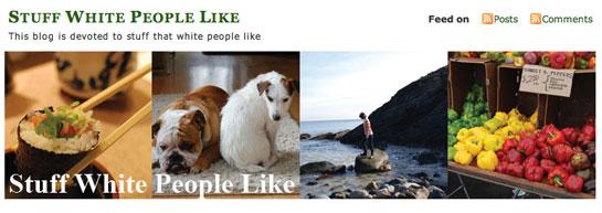 stuff_white_people_like.jpg