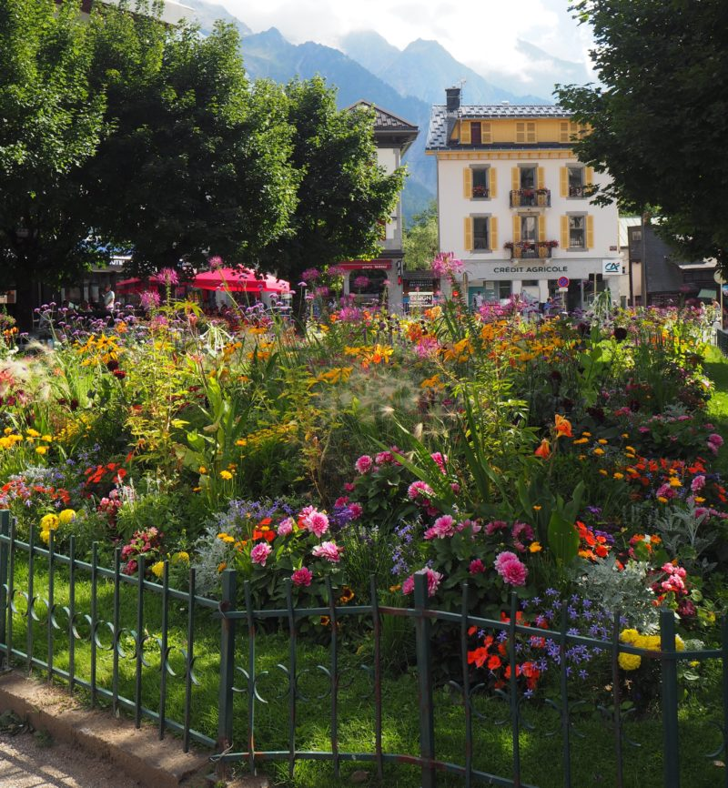 Garden and trellis outside Chamonix | Changing Pages | Black Lion Journal flowers