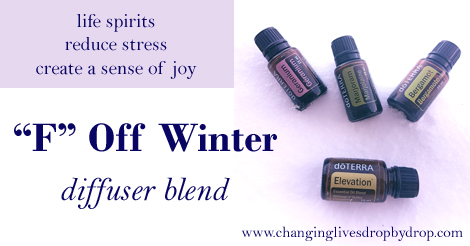 """F"" Off Winter Diffuser Blend"