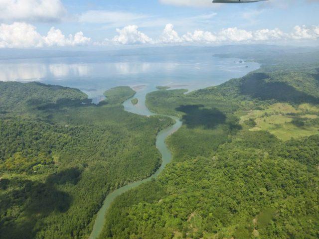Humedal mangrove system