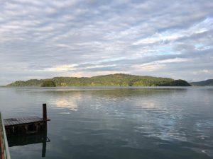 Golfo Dulce Mangrove