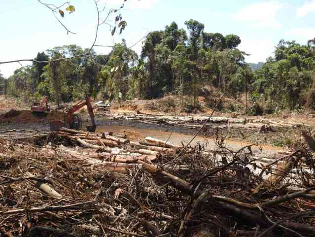 Indigenous communities in Sarawak call for an end to oil