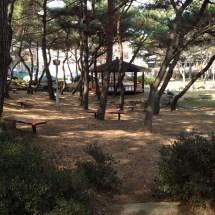 Sangnam Barefoot Park Changwonderful
