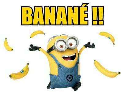 un minions jette des banannes en criant : «Banané!» logique