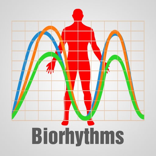 Erik on Biorhythms