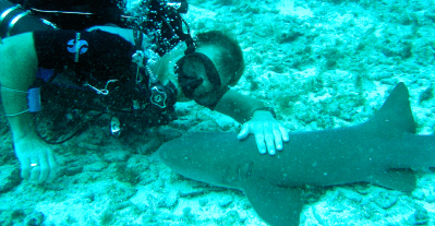 SLIDER CHRIS AND SHARK-01