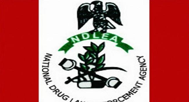 Ndlea Nabs 90 Suspected Drug Traffickers In Niger