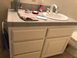Earthy Bathroom, Bathroom Remodel, remodel, dmv interior designer, bowie maryland, washington dc, before