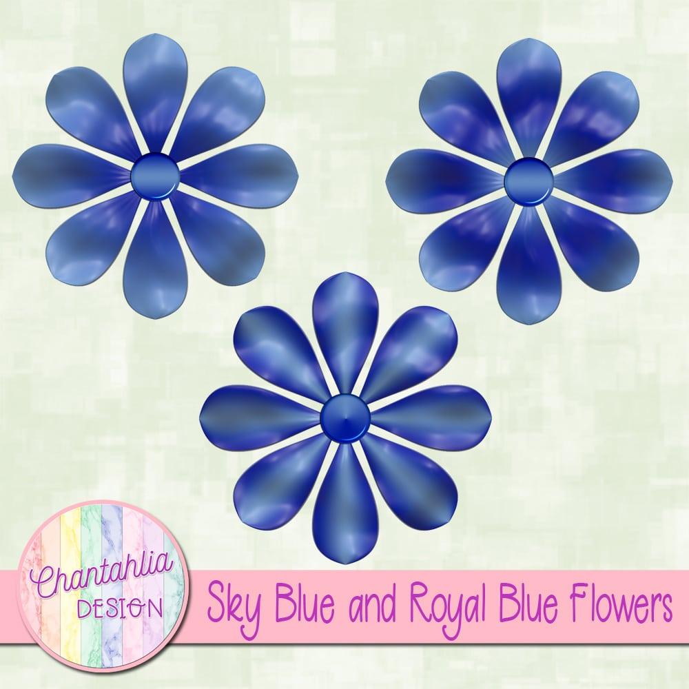 Sky Blue And Royal Blue Flowers Chantahlia Design