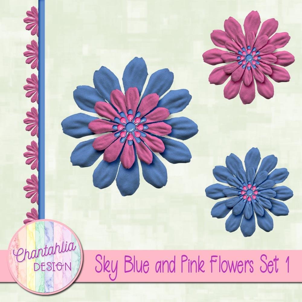 Sky Blue And Pink Flowers Set 1 Chantahlia Design