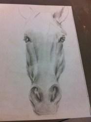Unfinished horse.
