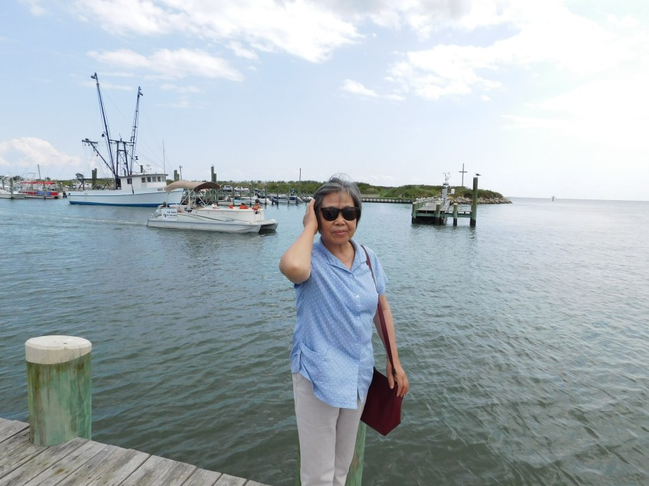 Chincoteague Island 青口提个岛 港口