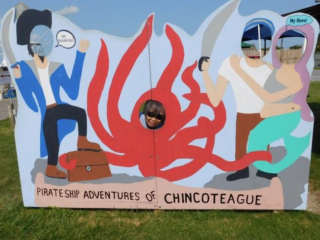 Chincoteague Island 青口提个岛 章鱼