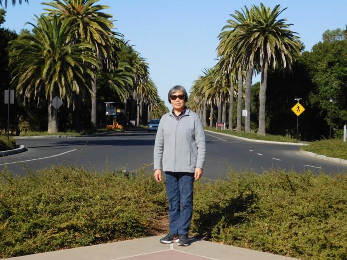 斯坦福大学棕榈树大道