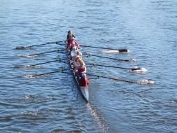 查尔斯河哈佛皮划艇队