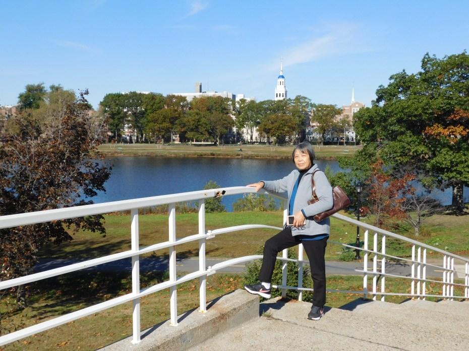 去哈佛商学院的桥