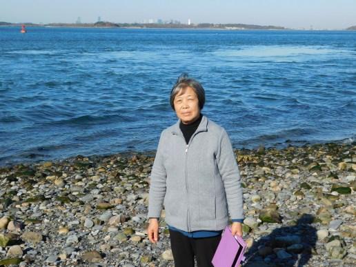 波士顿南部Nuckette小岛远处波士顿天际线