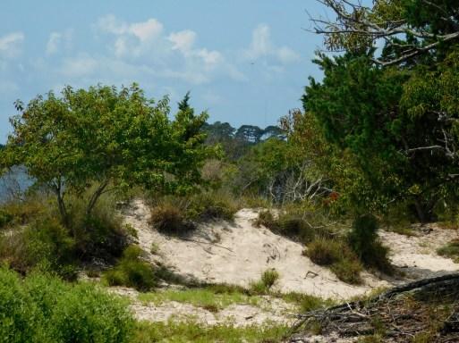 沙丘一世界