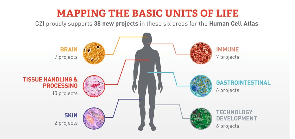 medium resolution of  for the human cell atlas project but for science and technology more broadly ultimately aiding our goal to help cure prevent or manage all diseases