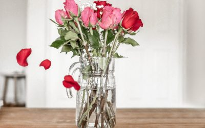 Celebrating Valentine's Day at Home - What to Eat & Do   Chaos and Coffee