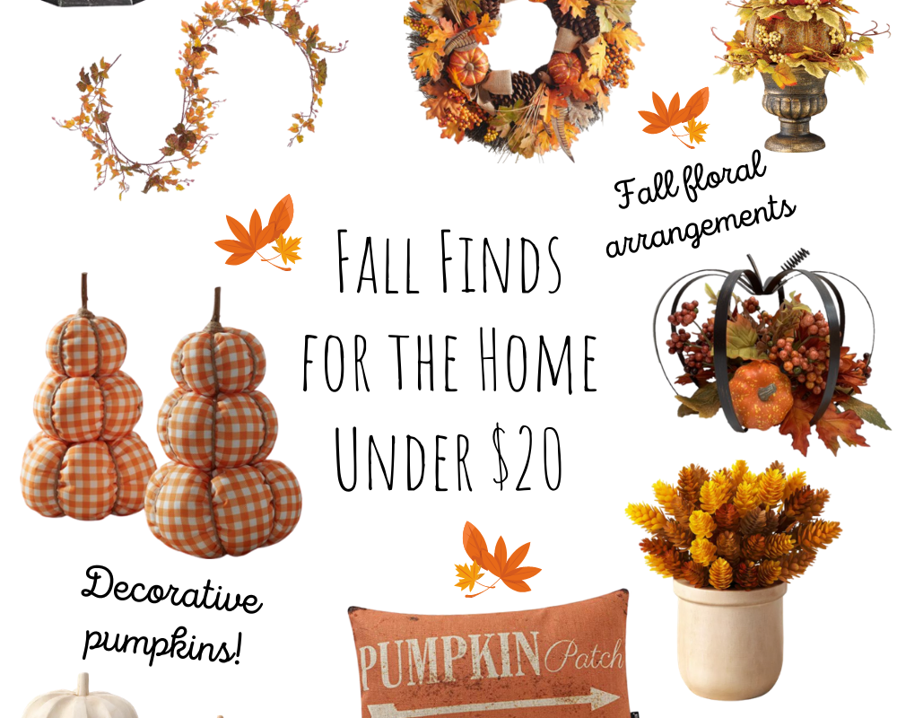 Fall Decor Finds for the Home Under $20 | Chaos and Coffee