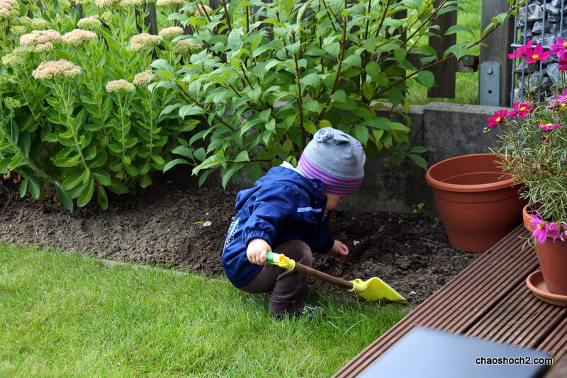 Gartenpflege vom Krümel