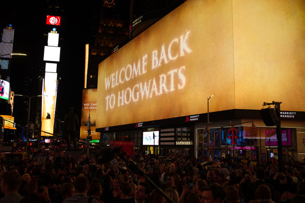 Will there be another Harry Potter movie?