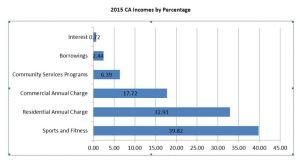 2015 CA Income by percentage
