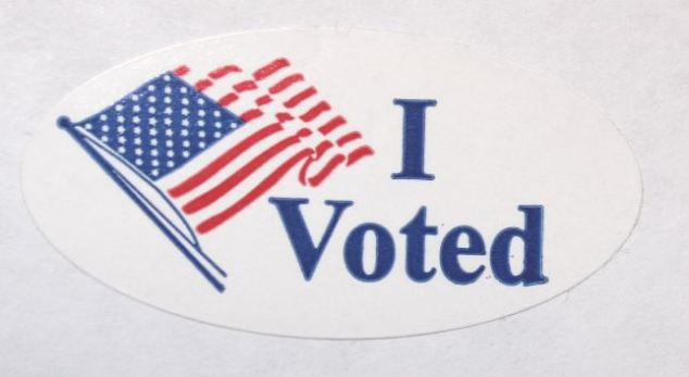 i-voted-picture