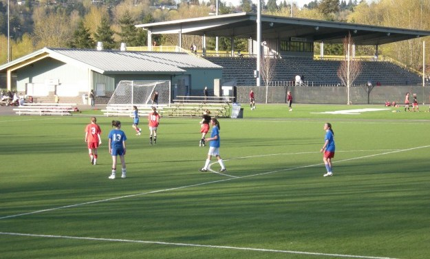 Possible Link Between Artificial Turf and Cancer