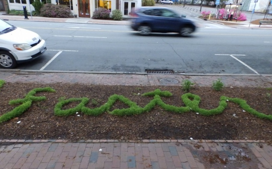"""Floraffiti"" Turns Plants Into Poetry"