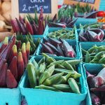 Local Lore: The Carrboro Farmers Market