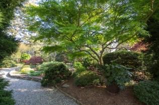currier-the-unique-plant-garden-3_34119375261_o