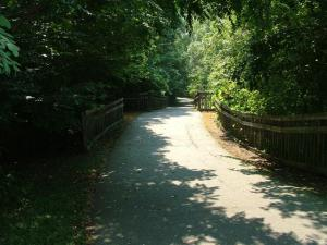 Chapel Hill Trails