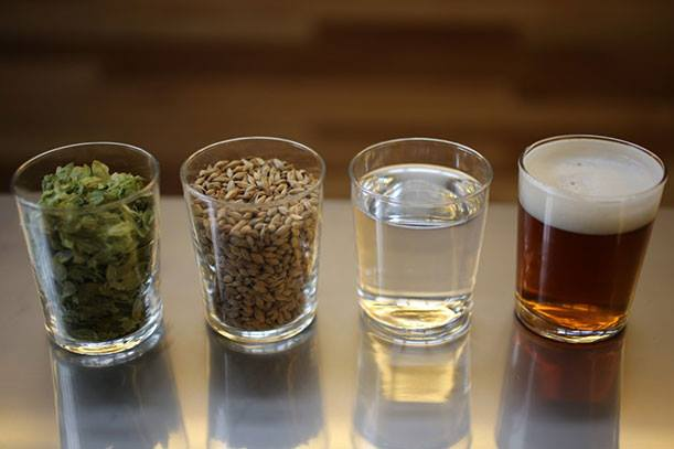 Glasses with Grain, Hops, Water and Beer
